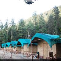 camp-wildwood-mashobra_tn.jpg